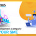 How to choose the Perfect Web Development Company for your SME